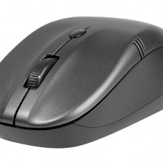 Mouse Tracer JOY Grey RF nano, USB, Optica