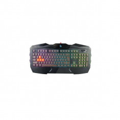 Tastatura gaming A4Tech Bloody B254 USB Black, Cu fir
