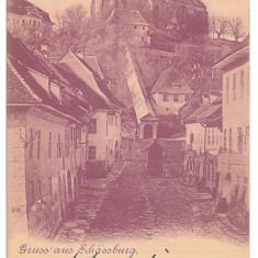 3793 - Litho, Mures, SIGHISOARA - old postcard - used - 1900 - Carte Postala Transilvania pana la 1904, Circulata, Printata