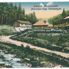 2430 - MARAMURES - old postcard - unused - Carte Postala Maramures dupa 1918, Necirculata, Printata