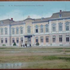 Radauti , Bucovina , ilustrata color de inceput de secol 20 , animatie , necirc., Necirculata, Printata