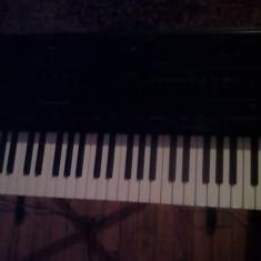 Roland g800 - Orga