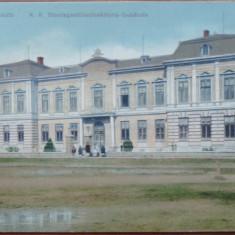 Radauti , Bucovina , ilustrata color circulata in 1917 , animatie, Printata