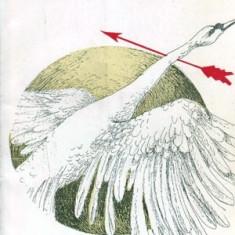 Mitul sfasiat (mesaje stravechi) - Autor(i): Vasile Lovinescu - Carte traditii populare