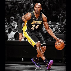 Costum complet baschet Lakers Kobe Bryant Hollywood Nights L - Echipament baschet