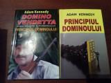 PRINCIPIUL DOMINOULUI  DOMINO VENDETTA