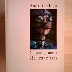Andrei Plesu - Chipuri si masti ale tranzitiei - Filosofie