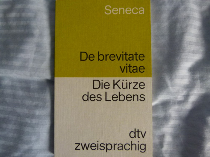 Seneca - german- latin foto mare