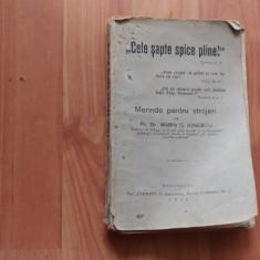 CELE SAPTE SPICE PLINE-MERINDE PENTRU STRAJERI-PR. DR. C. IONESCU - Carti Predici