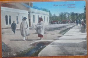 Ruteni din Bucovina de Nord , circul. militara austriaca , primul razboi , 1916
