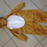 Costum CERB - REN - CAPRIOARA  compleu carnaval serbarbare