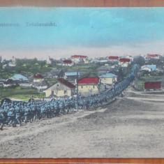 Zastawna, Bucovina de Nord, Armata austriaca in mars, Primul razboi, circul. - Carte Postala Bucovina 1904-1918, Circulata, Printata