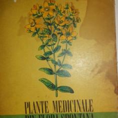 Plante medicinale din flora spontana 16planse color/333pag/ilustratii/an 1973