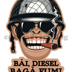 "Sticker Auto / Sticker Auto,, Bai Diesel Baga Fum"" - Stickere tuning"