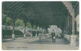 2141 - Valcea, CACIULATA - old postcard - used, Circulata, Printata