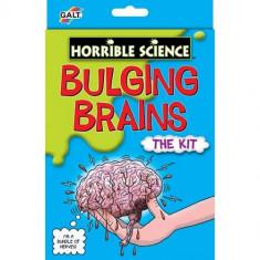 Bulging Brains - Kit Experiment Creierul Uman - Jocuri Logica si inteligenta Galt