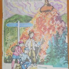 Napsugár ( LUMINITA ) - NR 11 NOIEMBRIE 1970 - ILUSTRATII LIVIA RUSZ - Reviste benzi desenate