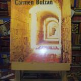 "Carmen Bulzan - Jurnalul spaniol ""A4457"""