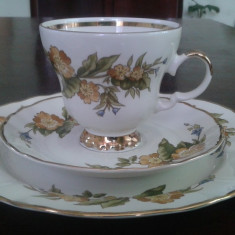 Serviciu Ceai/Cafea/Mic Dejun Portelan Fin Royal Winterling