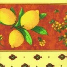 Fata de masa din franta 160x160cm Citron brique Raki