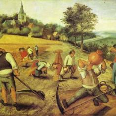 Pieter Brueghel - Vara