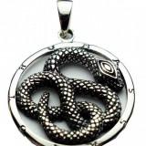 Pandantiv argint Sarpe pe cerc - Pandantiv fashion