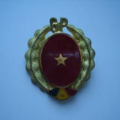 Cuc ofiter Garzi Patriotice