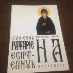 STILIANOS PAPADOPOULOS, VIATA SI MINUNILE CUVIOSULUI PATAPIE EGIPTEANUL - Vietile sfintilor