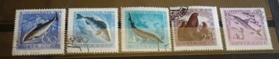 RUSIA 1959/60 – PESTI SI MAMIFERE MARINE, serie stampilata , AM42 foto