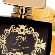 Parfum barbati Federico Mahora FM 302 Buisness 100 ml, Apa de parfum, 50 ml
