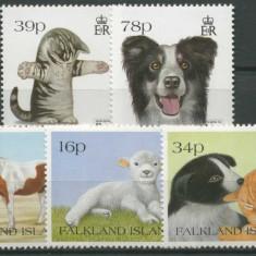 Falkland Islands 1994 - Animale domestice, supr. expo, serie neu - bancnota america