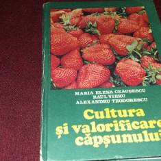MARIA ELENA CEAUSESCU -CULTURA SI VALORIFICAREA CAPSUNULUI