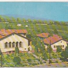 Bnk cp Odobesti ( Vrancea ) - Statiunea experimentala hortiviticola - circulata - Carte Postala Moldova dupa 1918, Printata