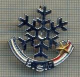 ZET 630 INSIGNA SPORTIVA - E.S.F. -RENUMITA SCOALA FRANCEZA DE SKI(SCHI)