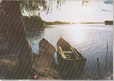 bnk cp Delta Dunarii - Vedere - circulata foto