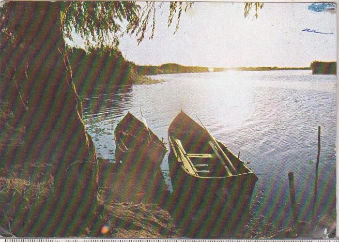 bnk cp Delta Dunarii - Vedere - circulata foto mare