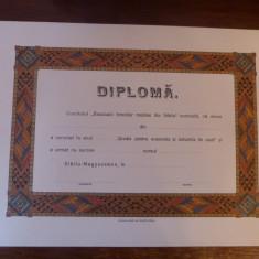 Diploma originala Sibiu antebelica Scoala pt economie Reuniunea Femeilor Romane