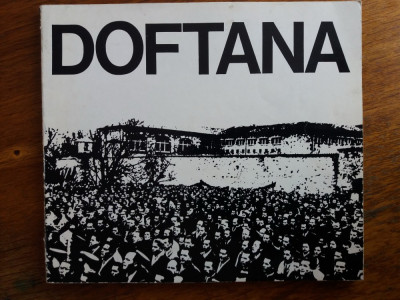 Doftana - Ion Ardeleanu / R7P3F foto