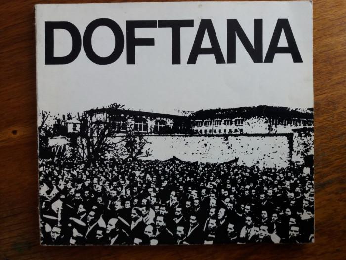 Doftana - Ion Ardeleanu / R7P3F foto mare