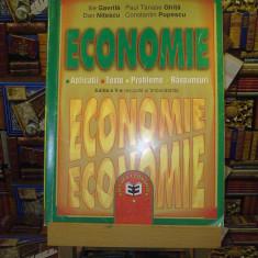 Ilie Gavrila - Economie