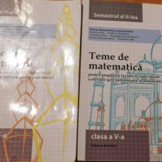 Teme de matematica, clasa a V, semestrul I + II de Petrus Alexandrescu - Culegere Matematica