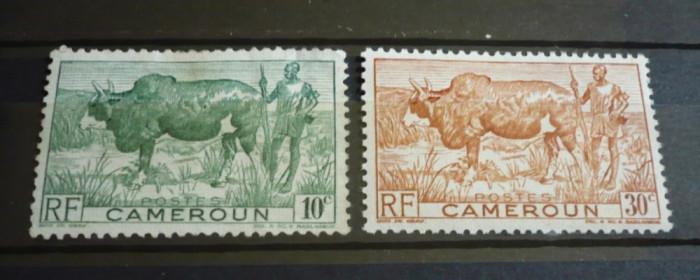 CAMERUN ? CRESCATORI DE ZEBU, timbre cu SARNIERA, AM90