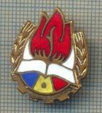 ZET 660 INSIGNA - PIONIER -PENTRU NOSTALGICI