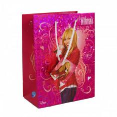 Punga pentru cadou Hannah Montana, 32.5 x 26 cm, Multicolor