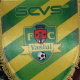 Fanion fotbal