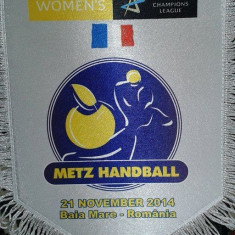 Fanion handbal