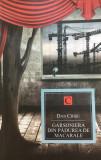 GARSONIERA DIN PADUREA DE MACARELE - Dan Chisu