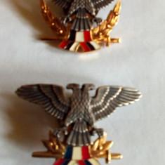 Insigne militare fosta Iugoslavie(razboiul din 1991)