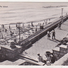 Bnk cp Eforie - Pe faleza - circulata - Carte Postala Dobrogea dupa 1918, Printata