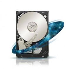 Hard disk server Seagate server 1TB SAS 7200 rpm 128MB Constellation ES.3 - HDD server